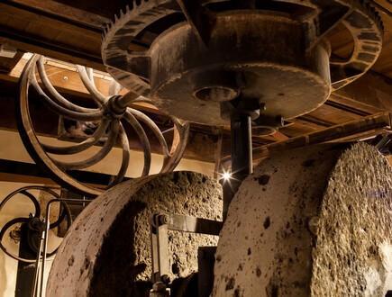 האבנים הטוחנות המיועדות לעצירת השמן בבית הבד. צילום: יוראי ליברמן