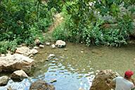 אל נחל דולב ומים בנחל שניר - חרמון