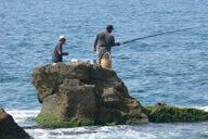 ציפורים, דייג ושלווה בגליל