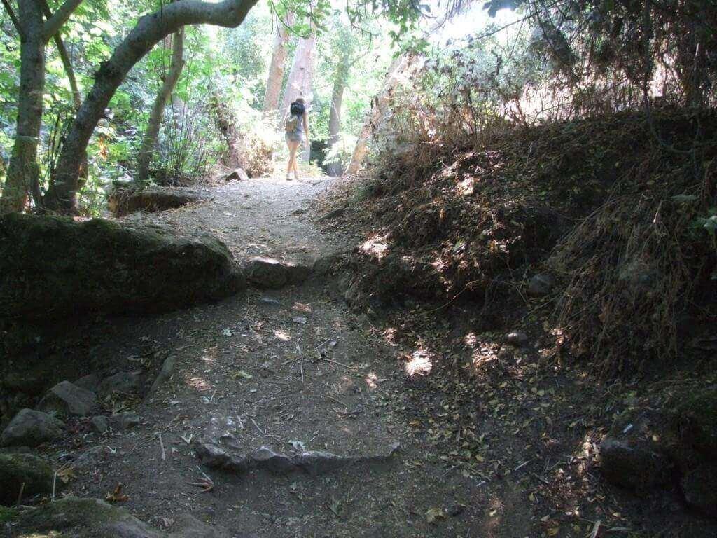 נחל עמוד - מסלול טיול