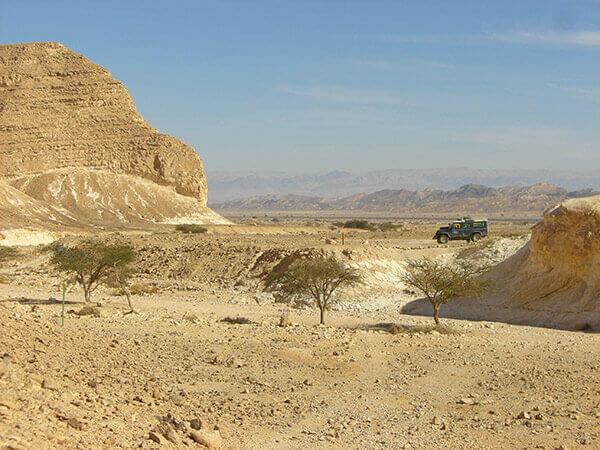 שבילים במדבר