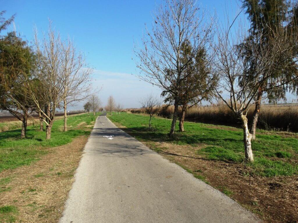 """השבילים שמקיפים את הפארק (התמונה באדיבות קק""""ל)"""