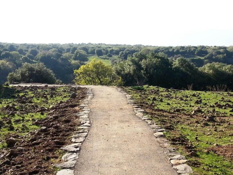 המסלול של הג'ובה הגדולה. התמונה באדיבות תיירות גולן