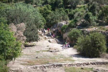 """שבילי הליכה מסודרים ביערות קק""""ל (צילום יח""""צ)"""