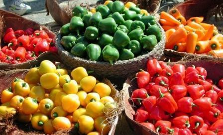 """פלפלים מכל הסוגים והצבעים (הצילום באדיבות מו""""פ ערבה)"""