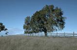 מה לעשות בגליל המערבי: סופש חורפי