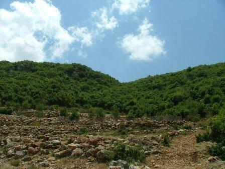 מעלה גמלא: נופש משקיף מההר