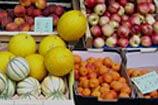 טיולי פירות הקיץ