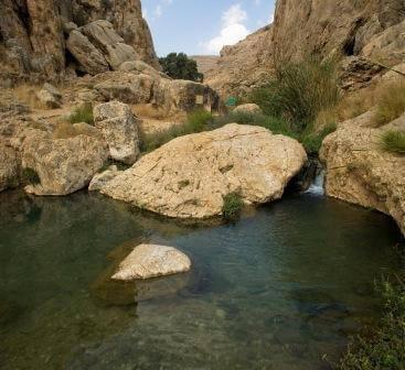 בתוך או ליד: טיולי קיץ במים