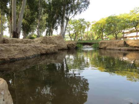 נובמבר: טיולים וסיורי טבע
