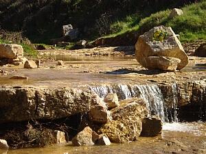נחל שילה הזורם (צילום ברוך אודסר)