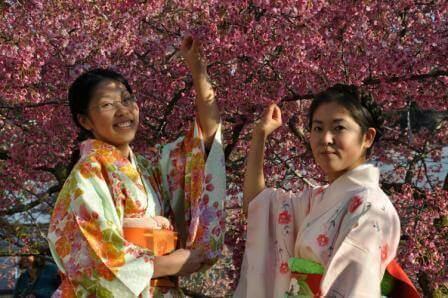 חגיגה יפנית (צילום יהודית מרקוס)