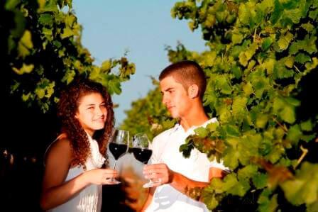 """פסטיבל של אהבה ויין (צילום יח""""צ)"""