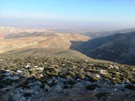 בקעת הירדן, צילום דב גרינבלט