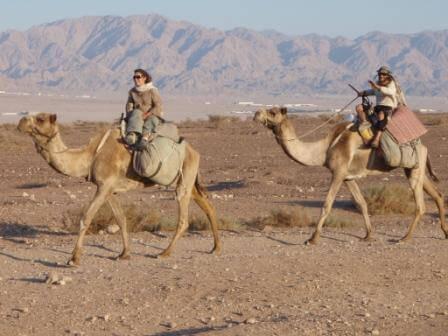 בערבה: צילום ארכיון רוכבי הגמלים