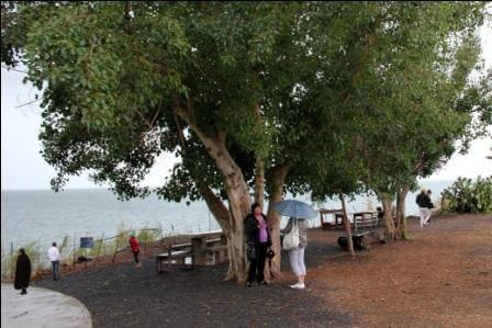 החוף בו ישו הלך על המים (צילום: אורן גבאי-גולן)
