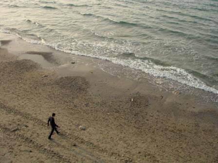 חוף ים ולא צריך יותר מזה כלום