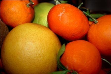 חגיגה של צבעים ופירות