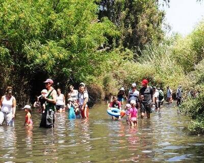 טיול ממוזג ביותר בתוך המים, המג'רסה (צילום אטי קוריאן)
