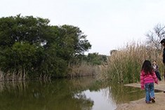 פארק ניצנים - חוף ניצנים