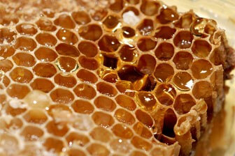 צימר דבש