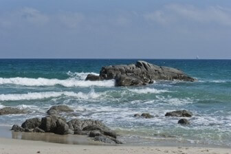 חוף אמנון