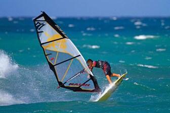 surf house-סרפ האוס - חיפה
