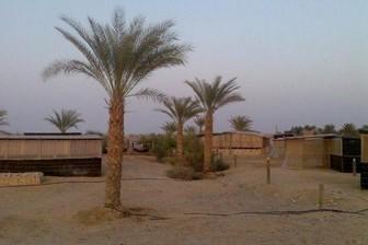 חאן שבילים במדבר