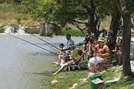 קמפינג דג בכפר