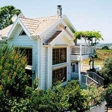 בית העץ של אלכסיס