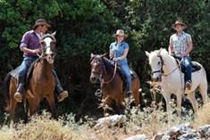 משק חפר - סוסים וריינג'רים